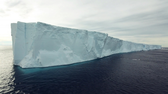 Antarctic Sound 8